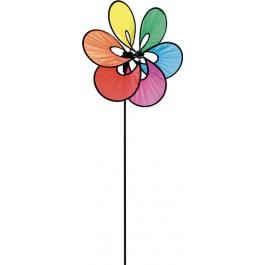 HQ Paradise Flower Rainbow